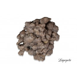 GINGEMBRE 500G